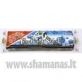 Skunk Blueberry 1/4 (mazi) pakuoteje 32 lapeliai .