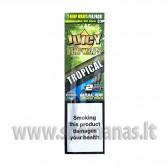 Juicy Hemp blunt tropinių vaisių (viduje 2 vnt.)